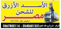 الاسد الازرق للشحن للشحن الدولي البري الى مصر